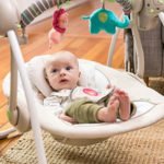 Ingenuity Baby Swing Reviews