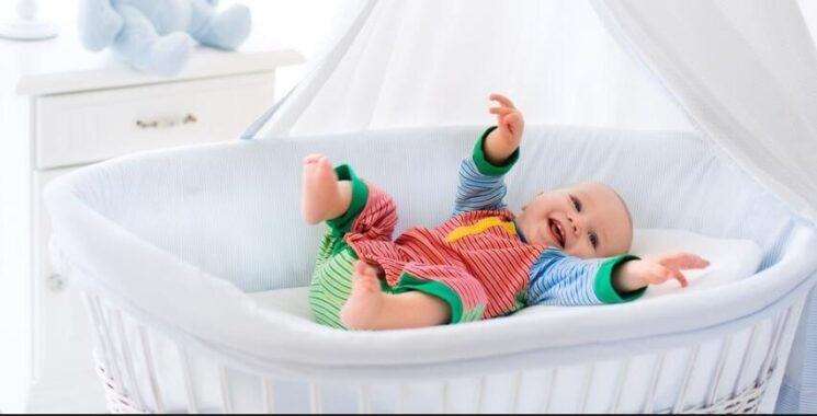 fisher price portable bassinet reviews