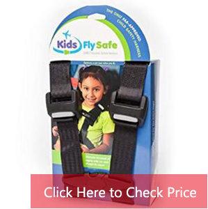 airplane travel harness